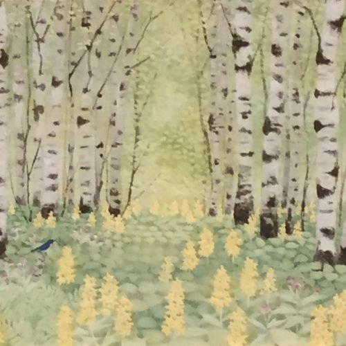 猪熊佳子『森へ‐シラカバとコルリ』
