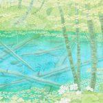 猪熊桂子『神の子池』