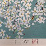 中島千波『三宝院の桜花』
