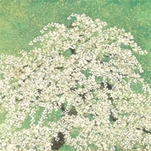 平松礼二『春桜図』