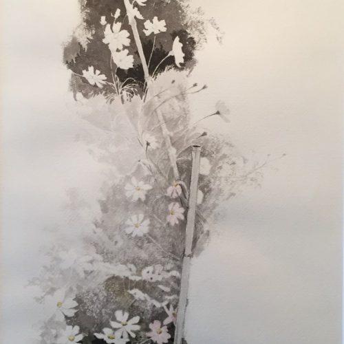 川端絋一『秋桜』